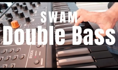 SWAM Double Bass In Action
